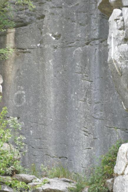 Dreznica-bosancica